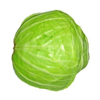 Fresh Online - Cabbage