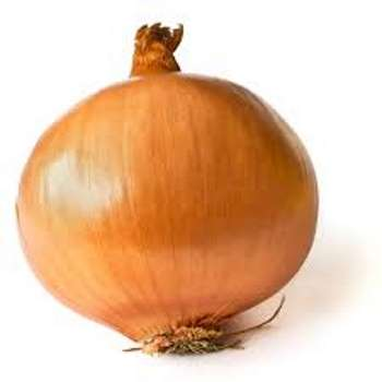 Onions from Fresh Online