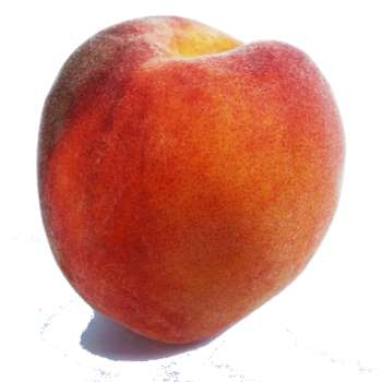 Fresh Online - Red Peaches