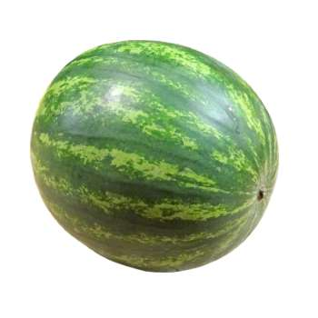 watermelon at Fresh Online